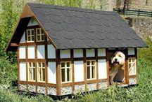 casitas para perros