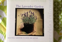 Books on Lavender
