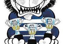 CATS AFL