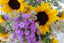 Flowers / Beautiful flowers and most amazing bouquets are here in this board.