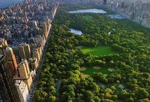 Gems of New York / Collections of beautiful New York