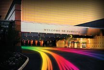 OUT at Borgata / Borgata Hotel Casino & Spa proudly supports diversity and embraces the LGBT Community: our Gay and Lesbian travel enthusiasts, employees and friends.