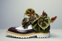 : arte▲sh : / The arte of the Shoe