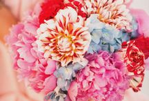 wedding / by Tiffany Ward