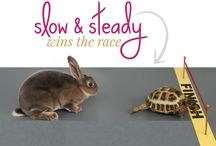 Slow and Steady Wins the Race – Be Confident about What You Do