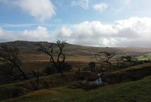 From One Wilderness To Another - Dartmoor / When I'm not in Mongolia, I live on Dartmoor National Park in Devon in the UK. It's 365 square miles of wilderness landscapes and is where I formulate a lot of my plans and ideas. It's not the same as Mongolia, but the wide open spaces can still challenge and inspire in the same way that Mongolia can.