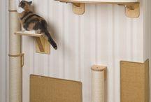 Katzensachen - Cat things
