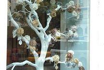 shop window displays