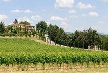 Wine Country Culture / Les plus beaux domaines viticoles - The most impressive wine properties