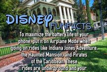 Disney Fun Facts! / Because we love Disney and all of the Pixie Dust it brings here are some super fun facts if you are traveling to see the mouse!