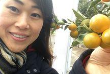Kiko and Fruit!