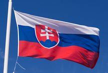 Slovakia / sk.findiagroup.com
