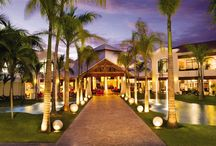 Dreams Palm Beach Punta Cana / by Dreams Resorts & Spas