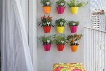 Inside Garden / inspiration for your apartments Toronto www.savethedates.ca
