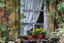 Beloved Doors & Windows