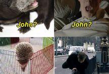 Sherlockki