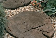 Stepping Stones / Stepping stones for the garden or even patio paving!