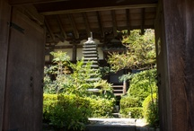 Shorenji Temple on Mt.Ogura, Nara!