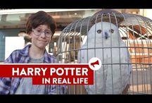 H*A*R*R*Y P*O*T*T*E*R / Harry Potter stuff I <3 Harry Potter Movies