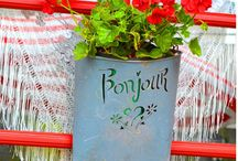 Geranium Love / Sharing my love for Geraniums and joyful ways I use them in my garden to inspire my art.