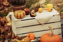 Inspiration - Autumn