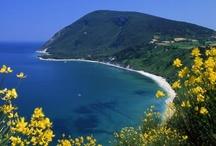 Conero / #conero  #rivieradelconero, #parcodelconero,  #marche riviera del conero, parco del conero , conero  ,                #sea #beach #italy  #travel #vacanze #mare www.rivieradelconero.info     www.conero.info        https://www.facebook.com/rivieraconero http://instagram.com/rivieradelconero