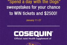 140th Westminster Kennel Club Dog Show / Cosequin is a proud sponsor of the 2016 Westminster Kennel Club Dog Show! Visit this board for behind the scenes photos at the Cosequin booth AND the show!