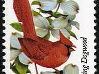 State Bird Stamps / by Stateside Associates