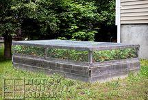 Garden-Raised Garden Beds