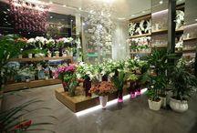 Interiér květinářství