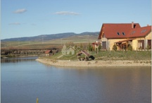 Pensiuni si hoteluri din Romania