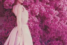 Where is the cat? / Audrey Hepburn