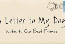 a letter to my dog for dog lovers everywhere a letter to my dog