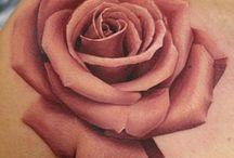 Rose proj