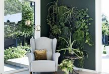 Treningsrom / Inspirasjon til tropisk vegg, farger, energi/vibber, feeling, interiør, detaljer.
