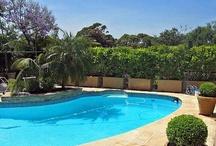 Backyard/Pool Decor