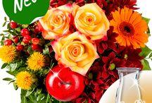 Tolle Blumensträuße & Blumengeschenke / Schöne Blumengeschenke