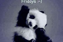 Barokah for Friday