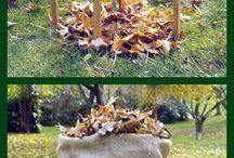 Porady : ogrodnictwo