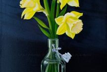 Spring Is in the Air / A collection of spring themed paintings from Art2Arts online gallery.