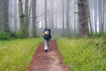Hiking / Get your hiking gear before summer!! / by Matt Taylor