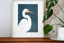 Hansby Design / Illustrations of unique New Zealand wildlife.