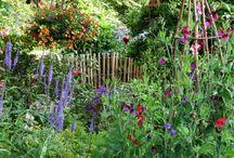 Eetbare tuin
