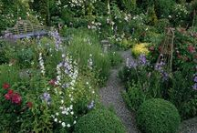 Gardens / by Mariana Scuderi