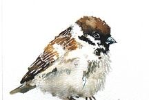 Sparrow / Cheeky birds to paint
