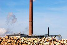 Biomass -- Biomasse