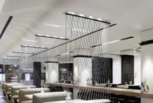 Project//Fusion Restaurant / by Morgan Virginia Bradshaw