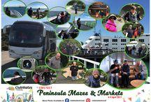 CM17017 Peninsula Mazes & Markets