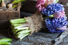 Flower arranging ideas / Ideas, tips and inspiration on how to arrange your favourite flowers and foliage to make colourful home decorations or thoughtful gifts.