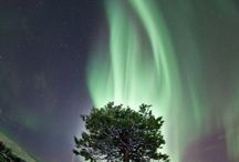 Northern Lights / Nordlichter